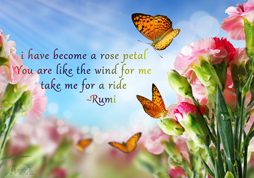 take me for a ride - Rumi